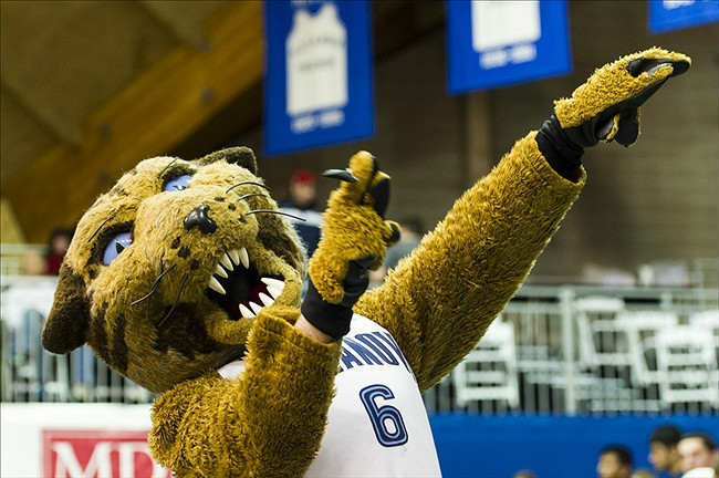 Creighton Bluejays vs. Villanova Wildcats NCAAB Free Pick