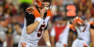 Ravens vs Bengals Week 10 Expert NFL Prediction 2019